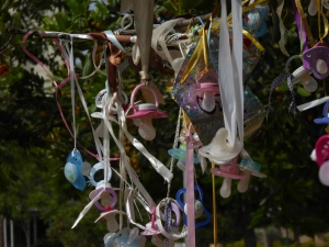 The Pacifier Tree (Naomi's Photos)